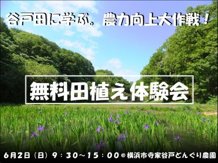 130602yatoda_taueS.jpg