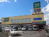 2012_03250001.JPG
