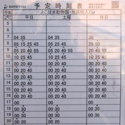 2012_03250026.JPG