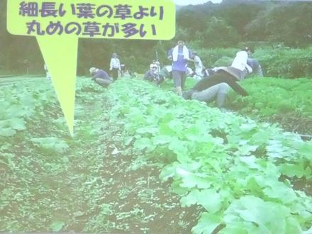 2012_0517namagami0044.JPG
