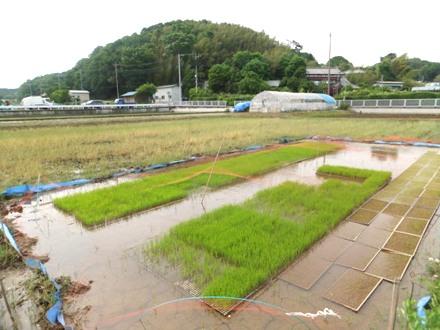 2012_0524jike0002.JPG