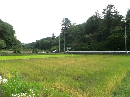 2012_0524jike0006.JPG