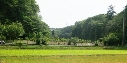 2012_0524jike0032.JPG
