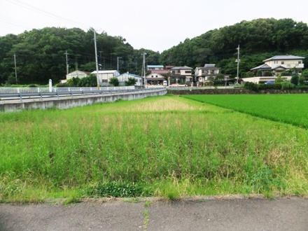 2012_0719agros0012.JPG