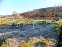 2012_1208shimosato0001.jpg