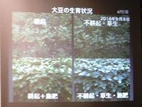 DSCF8732.jpg