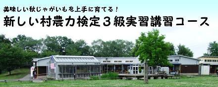 atarashimura_akijyagaimo.JPG