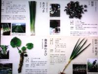 f140315yukinoken0034.JPG