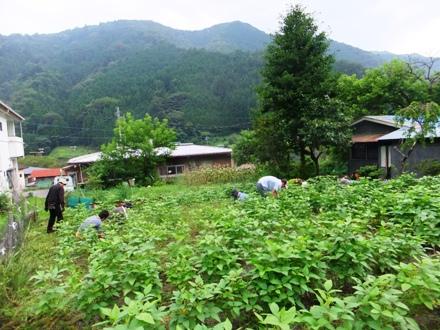 f2012_0818saihara0066.JPG