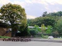 f2012_1005seisen0037.JPG