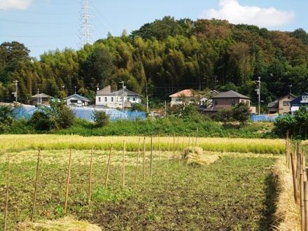 f2012_1008okuma0017.JPG