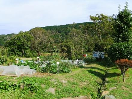 f2012_1013shimosato0101.JPG