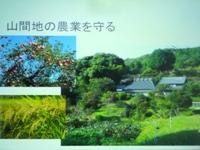 f2013_0212yuki0005.JPG