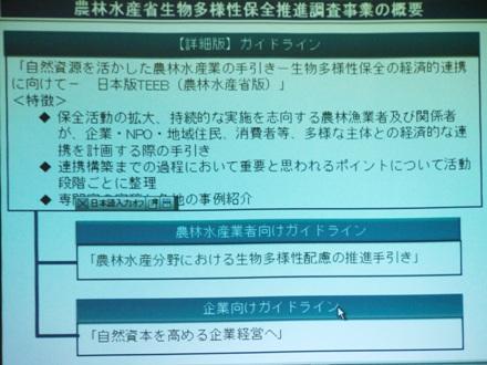 p140410nosui0031.JPG