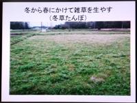 p2013_0205yuki0049.JPG