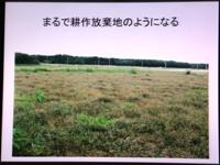 p2013_0205yuki0051.JPG