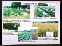 p2013_0219yuki0002-sm.JPG