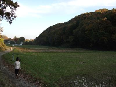 091111ogawatyo_tanada.JPG