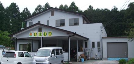 100505konohana_himawari.JPG