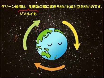 130305eco-system1.JPG