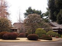 2012_02270005.JPG