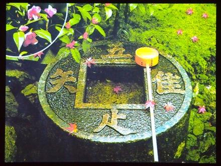 p2013_0521meigaku0018.JPG